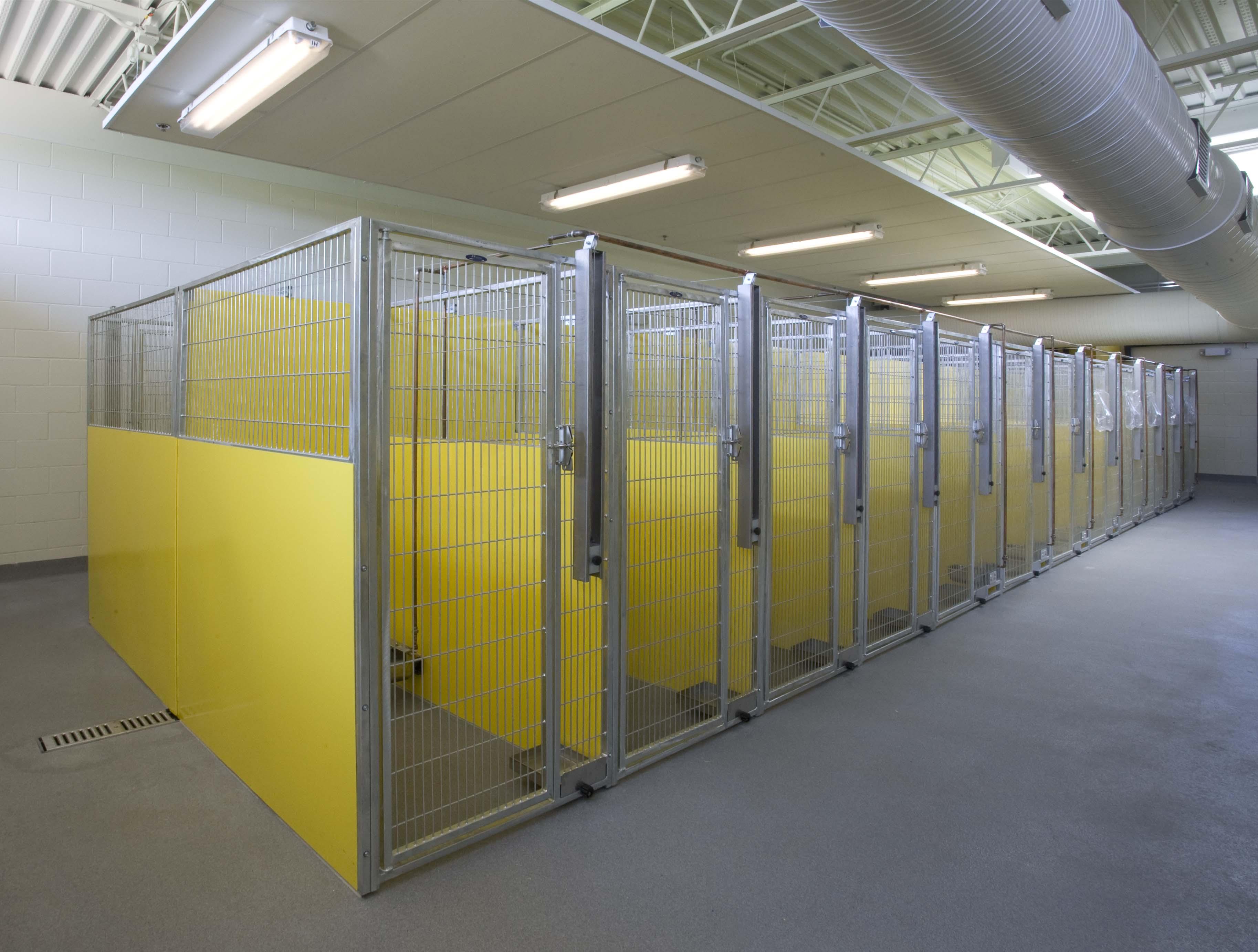 Animal Care & Control Center 029